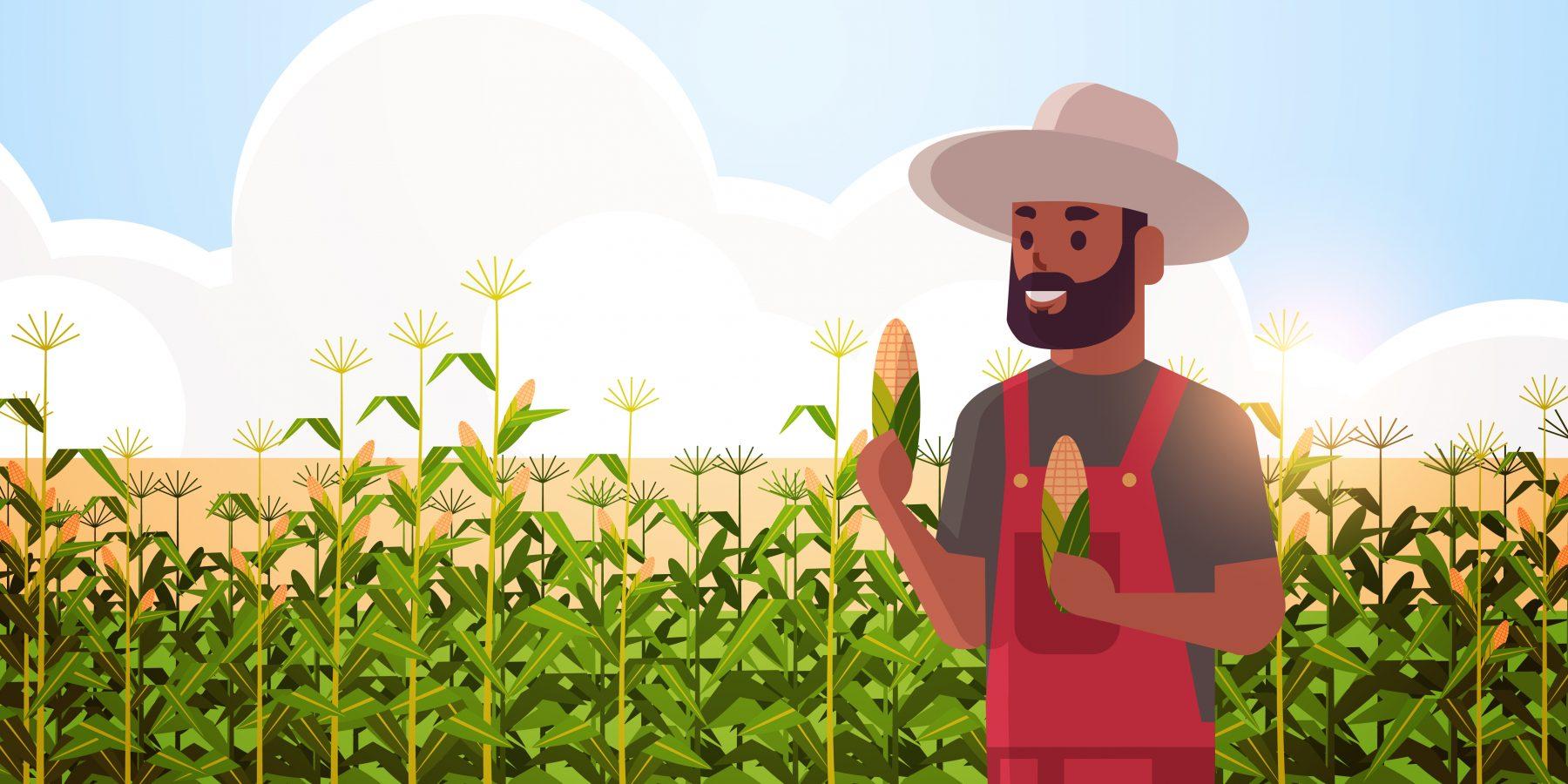 Male farmer holding corn